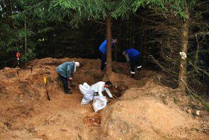 В ходе поисковых работ было обнаружено санитарное захоронение воинов РККА. Общий вид на раскоп