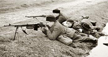 Польская модификация пулемёта BREN