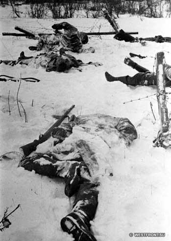 Убитые немцы под Наро-Фоминском. Зима 1941 г.