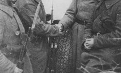 Вручение партбилетов в 110-й стрелковой дивизии