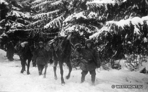 Конная разведка 1 гв. мсд в лесу. Декабрь 1941 г. Фото Минкевич В.Н.